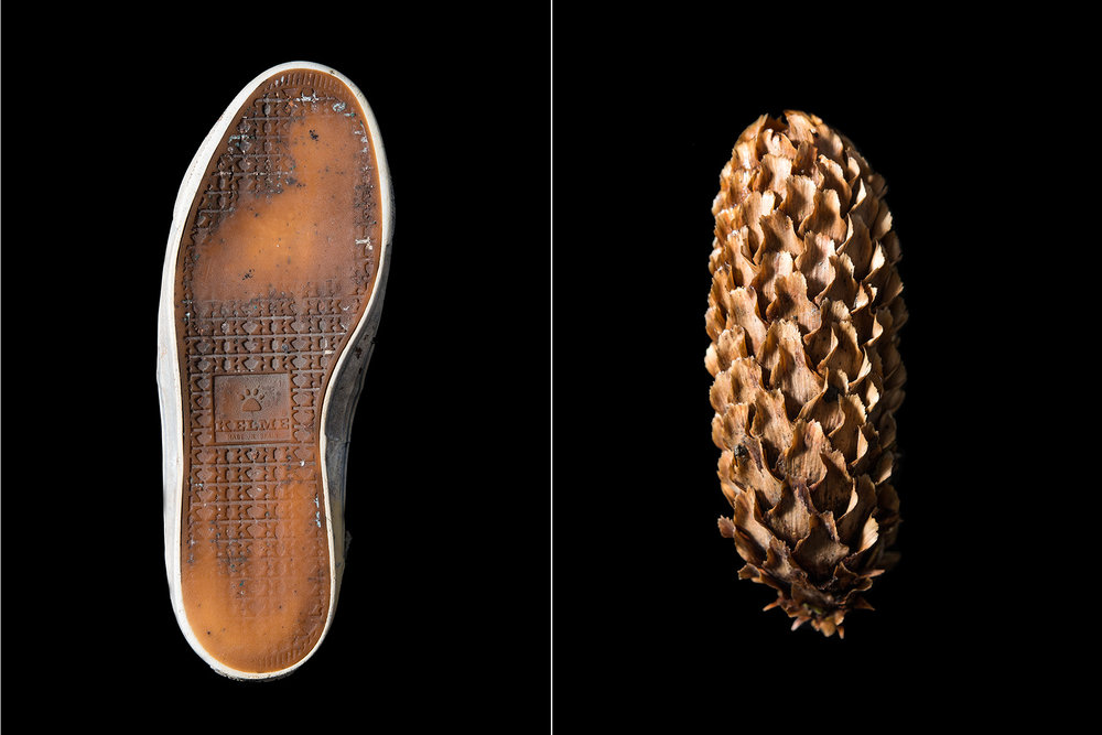 Shoe_Pinecone_Prints_6x4_Plastic_NaturalComparrison.jpg