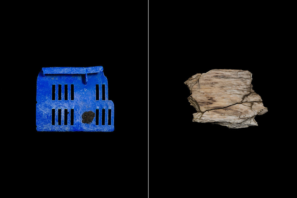 BluePlastic_PetrifiedWood_Prints_6x4_Plastic_NaturalComparrison.jpg