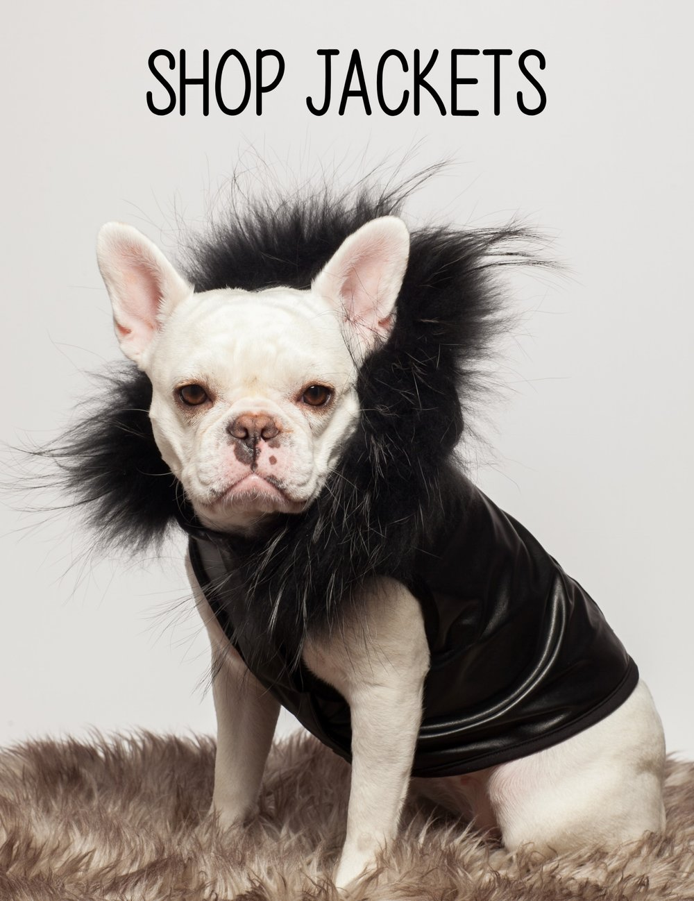 shop jackets.jpg