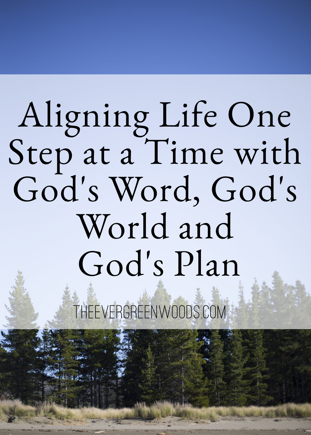 Aligning Life One Step at a Time with God's Word, God's World and God's Plan.jpg