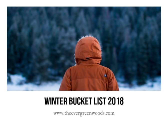 Winter Bucket List 2018 h.jpg