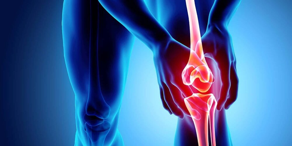 knee replacement cost,knee replacement surgery,hinge joint bones,knee operation