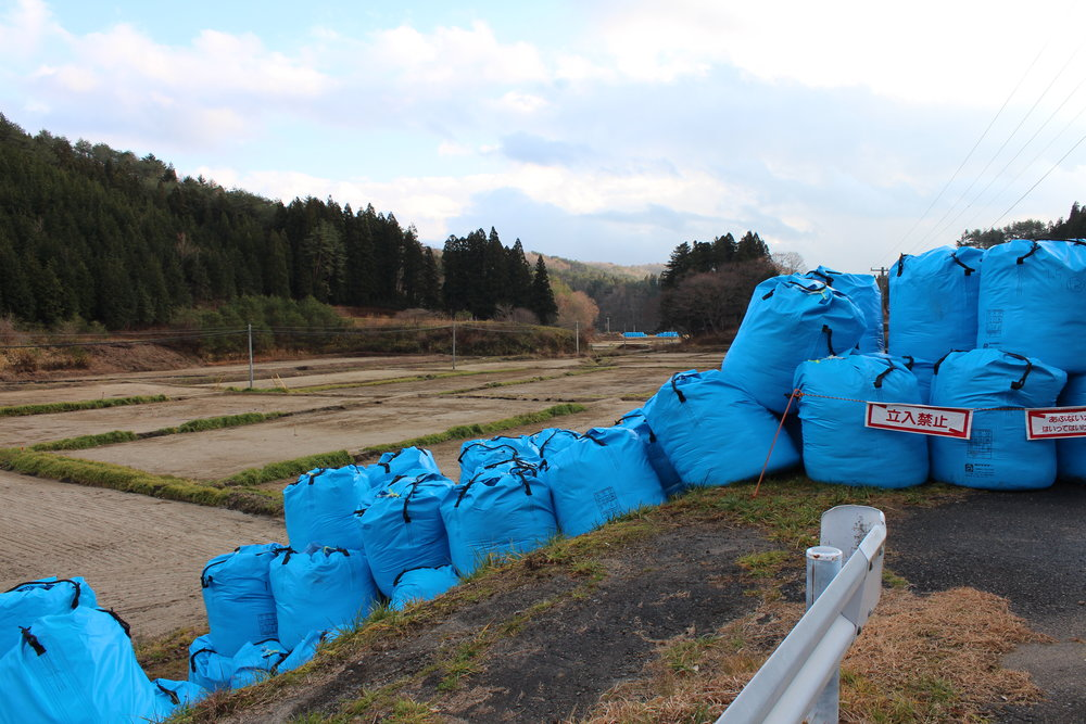 Bags of radioative waste awaiting some final, safe resting place.15.JPG