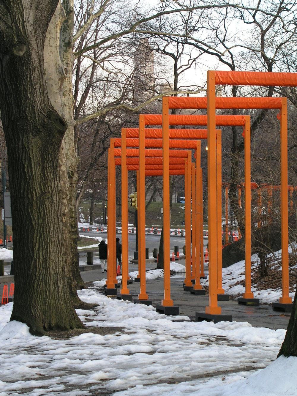 Gates Trees1.JPG