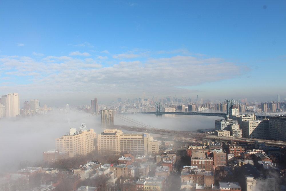 During a Polar Vortex and ice fog enveloped New York.6.JPG