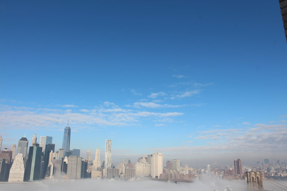 During a Polar Vortex and ice fog enveloped New York.9.JPG