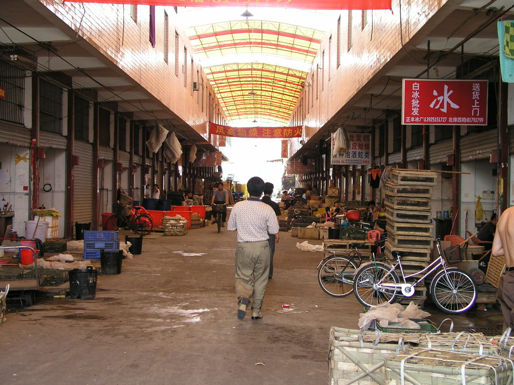 Chau Tau Market in Guangzhou where the SARS epidemic started from live civets .1.JPG