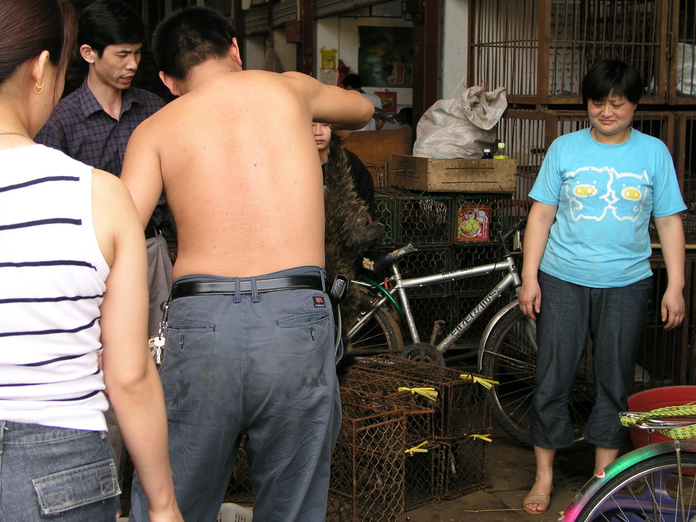 Chau Tau Market in Guangzhou where the SARS epidemic started from live civets .7.JPG