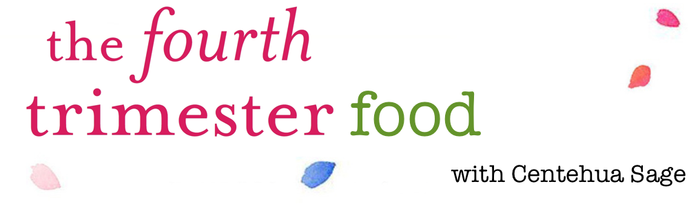 fourth trimester food course banner.png