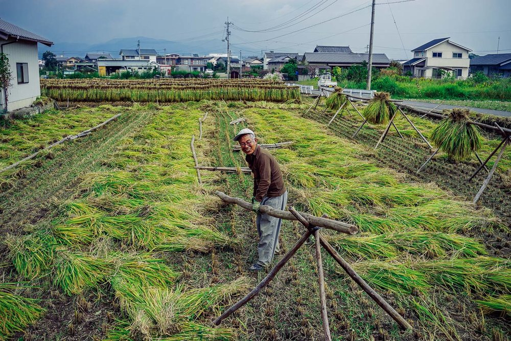 """Smiling rice farmer, Tokushima. Near the end of my 2015 walk. I asked in primitive Japanese if I could take his picture & he exclaimed, """"Okay!"""""""