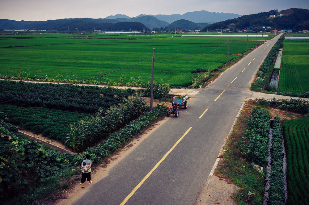Towards nightfall, a view from the highway of a woman carrying a child along a long, straight farm road.