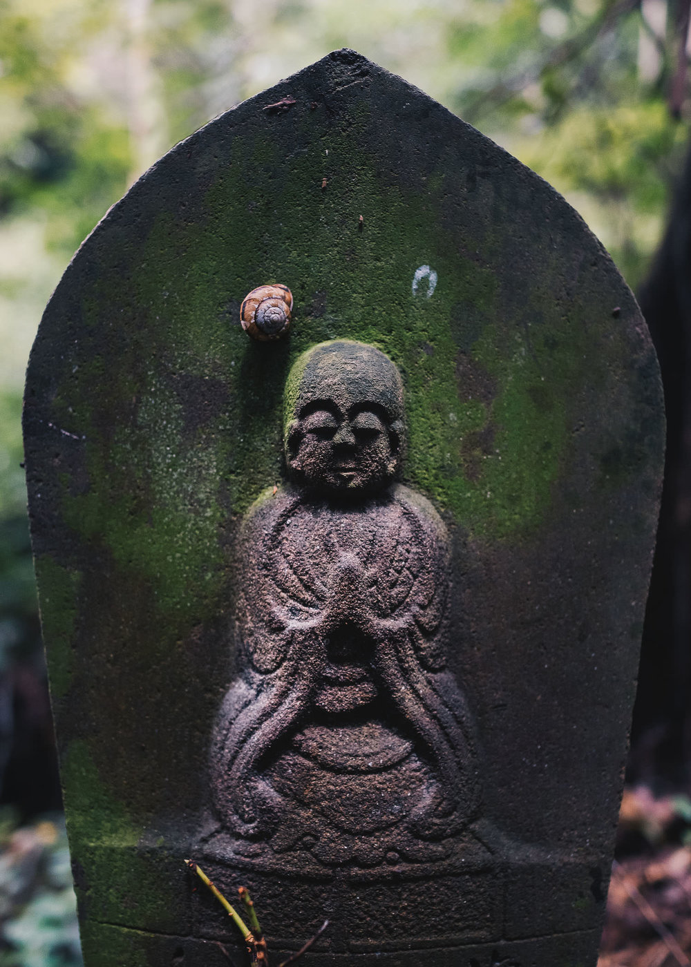 Day 7, Sept 2, 2015: A Sleeping Snail on an Ancient Gravestone at Iyadani-ji, Temple #71, Kagawa