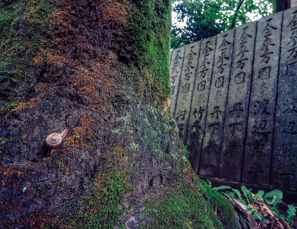 Day 14, Sept 9, 2015:Ascending Snail at Senyu-ji, Temple #58, Ehime