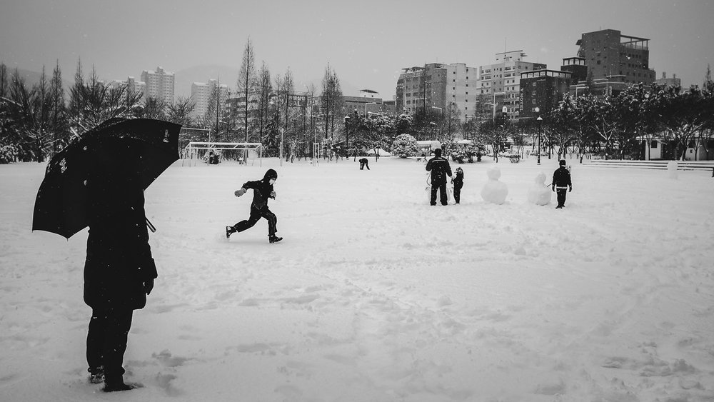 Jangyu Beautified: Rare winter snow in late December, 2012.