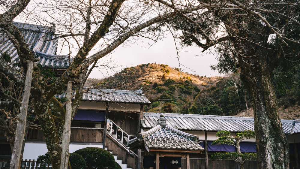 On a frosty morning this year at Dainichi Temple, Tokushima, temple #4 on the Henro, the first rays of dawn bathe a nearby hill.