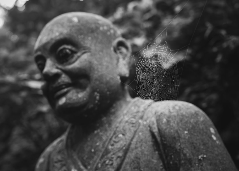 Day 9: A Rakan & a spiderweb on the approach to temple #66,Unpen-ji, Kagawa. In 2015 there were 500 of these enlightened figures, all different, lined up along the trail on the approach to this temple. They made for one of the most dramatic & mysterious backdrops I experienced - photo heaven on that misty, rainy morning after the steep forest climb. This year I reached the summit on a cold morning in the opposite direction & was disappointed to find that most had been moved & arranged in haphazard groups, losing much of their dramatic impact.