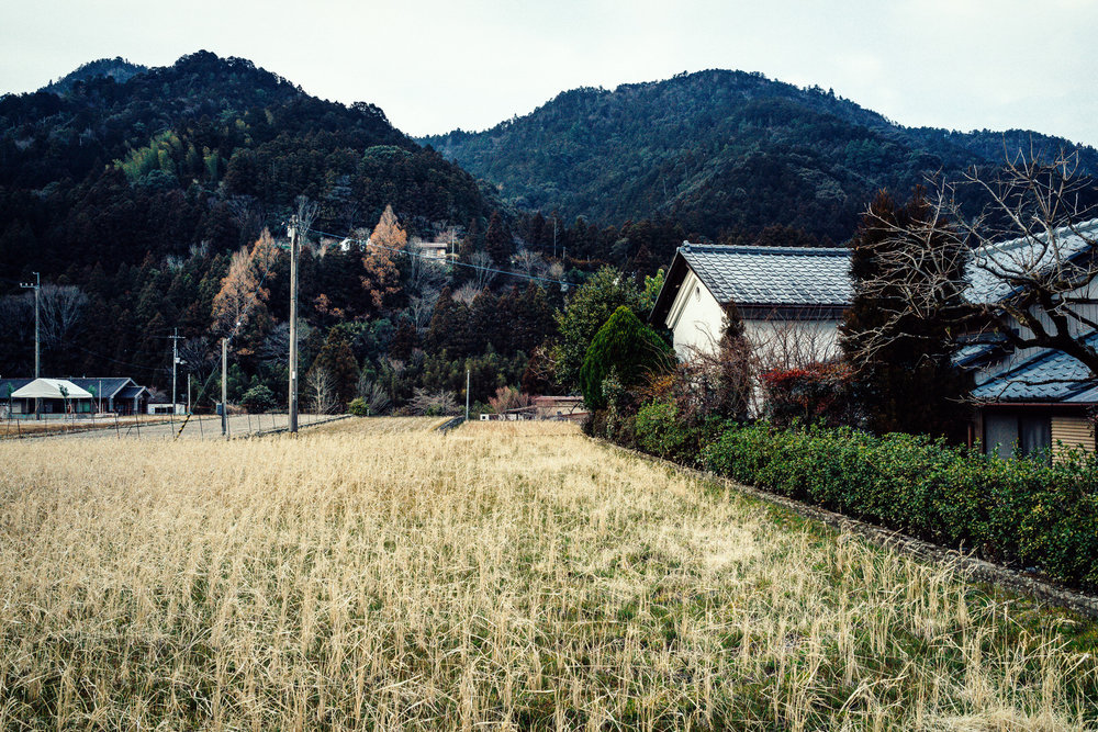 Peaceful Tokushima Farmland at Day's End: A Scene from My 2nd Pilgrimage, 2017