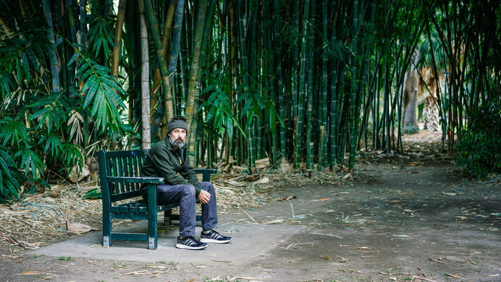 At Home Among the Bamboo, Old Botanic Gardens, Brisbane