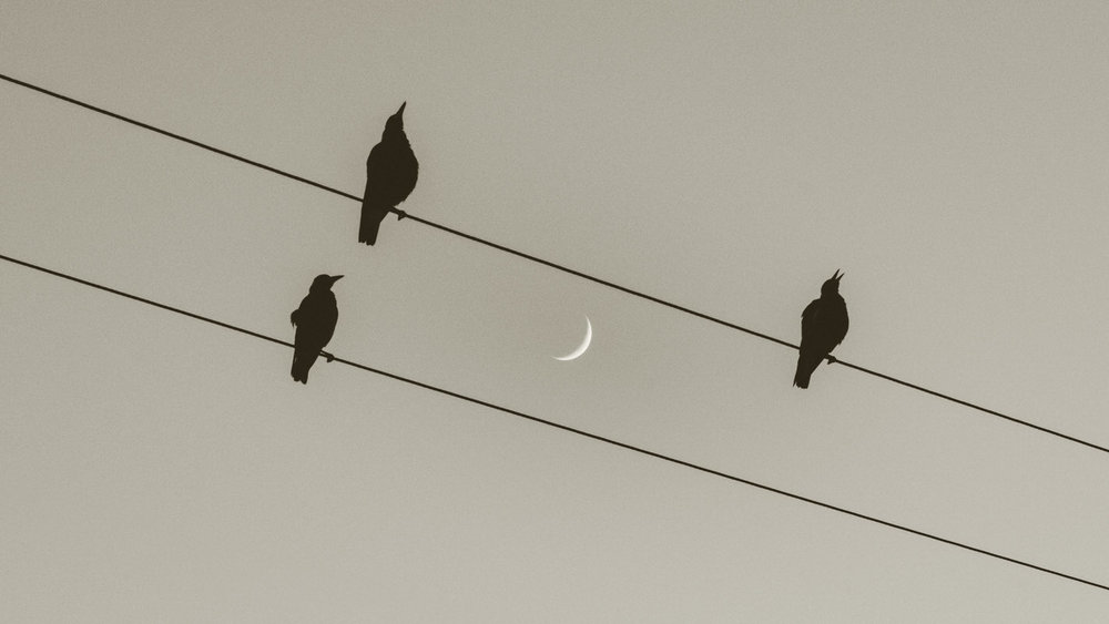 A Crescent Moon Crescendo