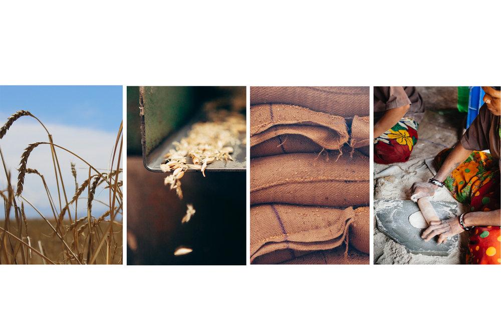 wheat together.jpg