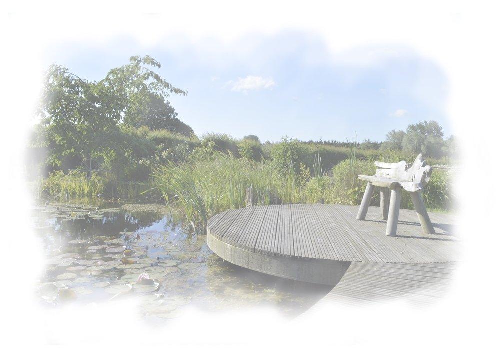 Pond Design.jpg