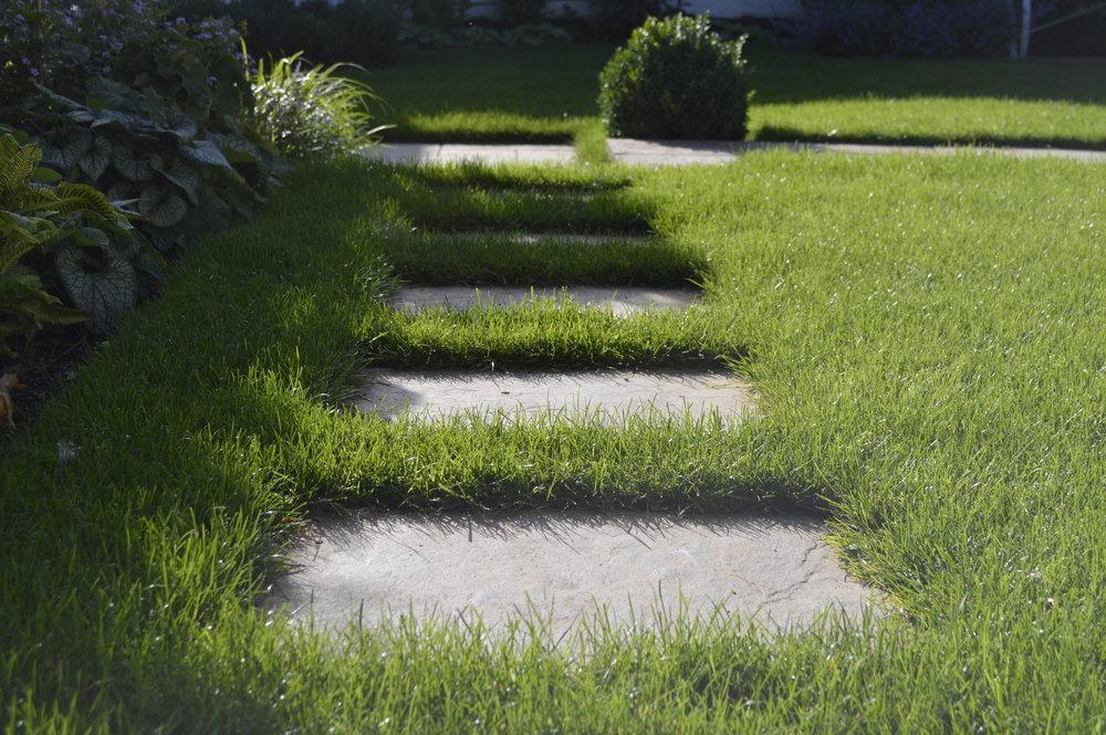 Garden Design Brighton