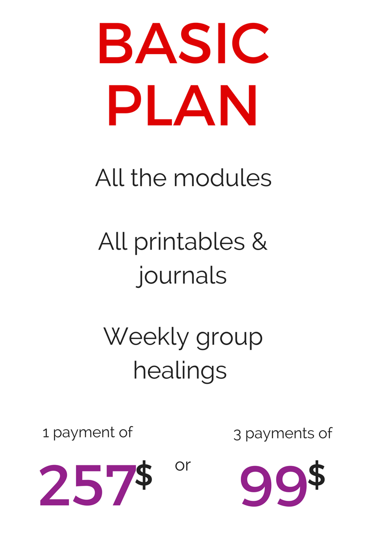BASIC plan higher price (1).png