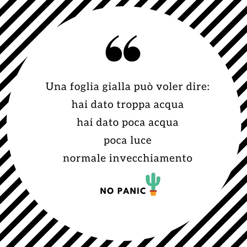 NO PANIC ACQUA.jpg