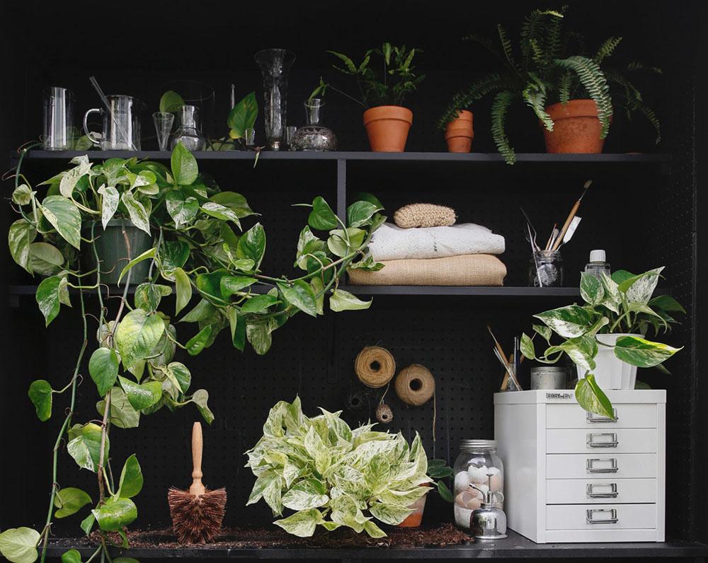 pic: www.gardenista.com