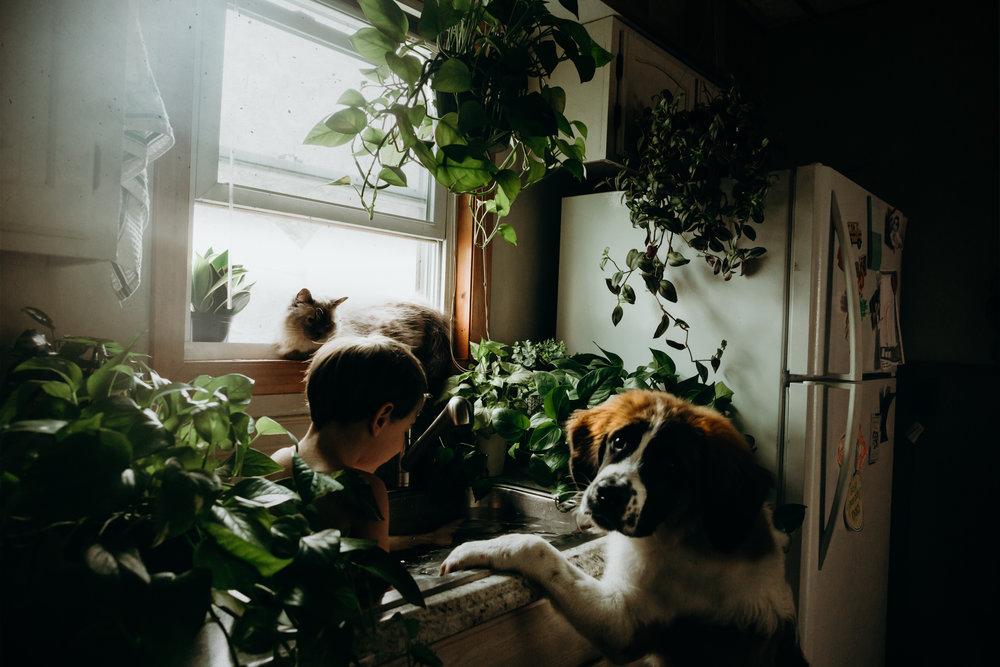 massachusettsfamilyphotographer