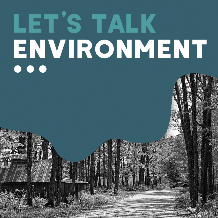 LetsTalk___environment.png