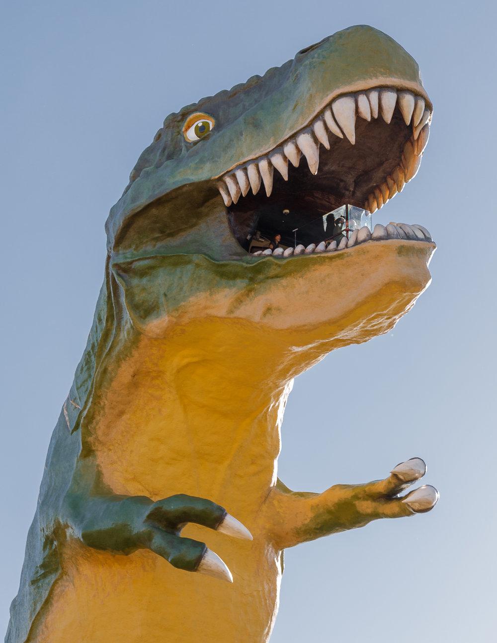 Dino21.jpg