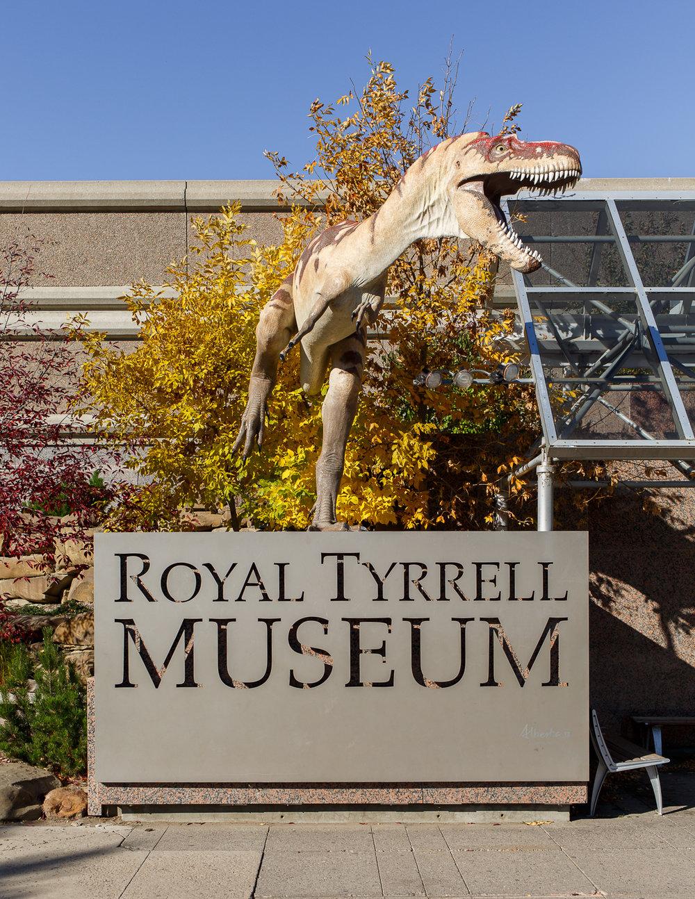 Dino7Museum1.jpg