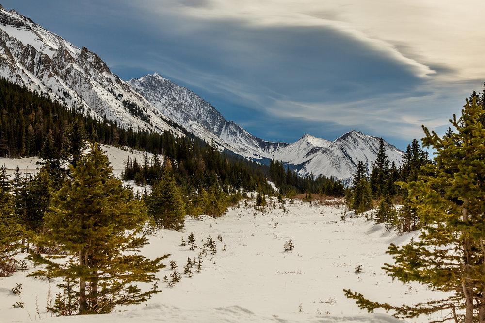 Mountain Vista1.jpg