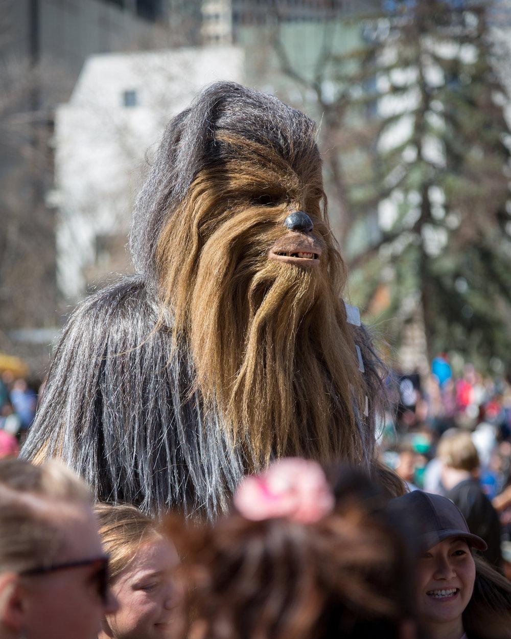 Wookie crowd2.jpg