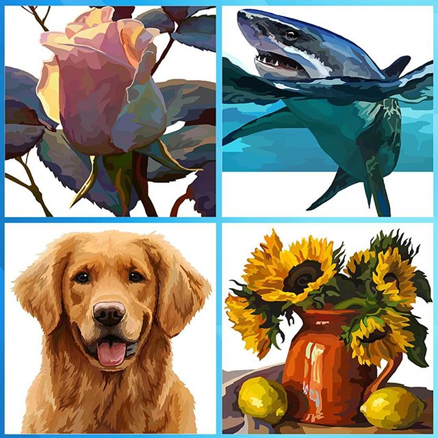 A few pics from my new colourings. #adultcoloringbook #colouringapp #adultcoloringapp #coloringapp #adultcolouringapp #shark #goldenretriever #dog #flowers #sunflower #rose