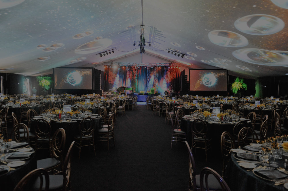 THE DILAWRI FOUNDATION BLISS BALL -
