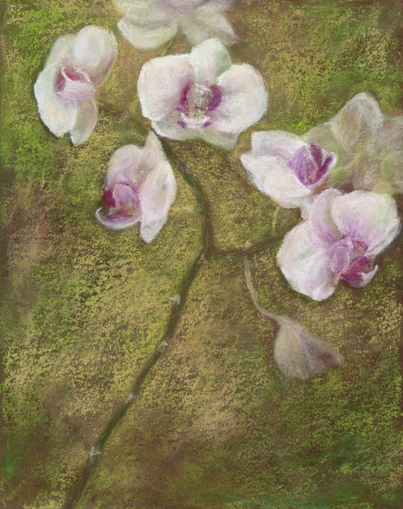 Orchid Memory