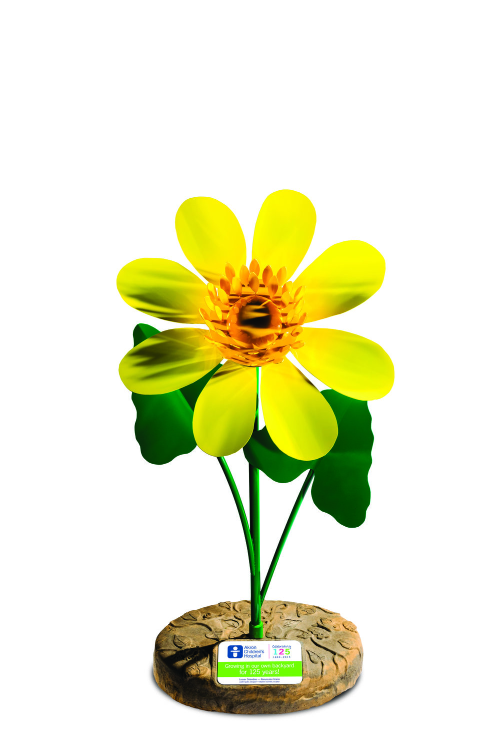 LesserCelandine_plaque_4CHR - Copy.jpg