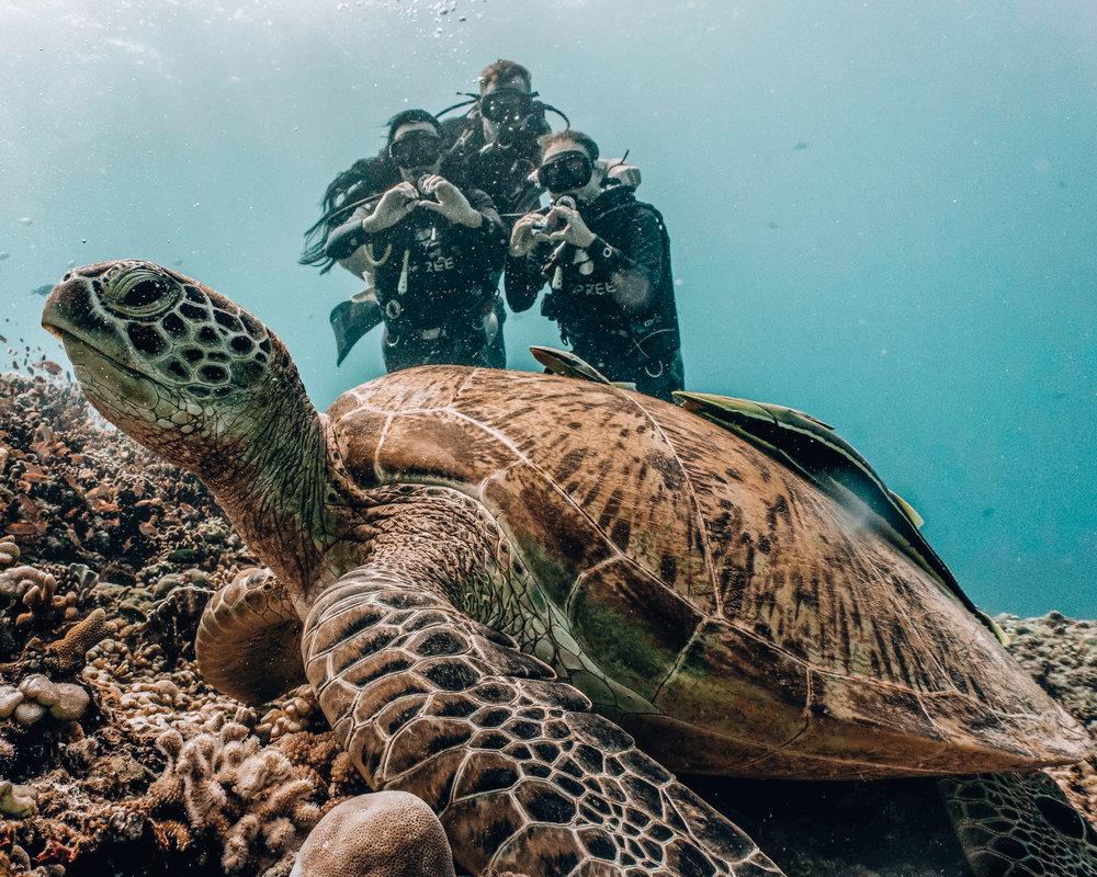gili-island-scuba-diving.jpg