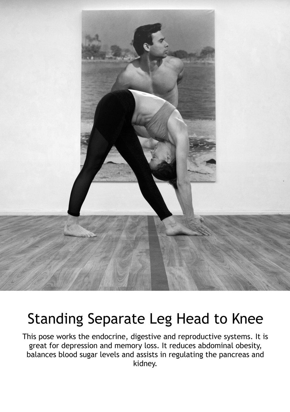 Standing Separate Leg Head to Knee