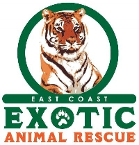 ec_animalrescue_503824.jpg