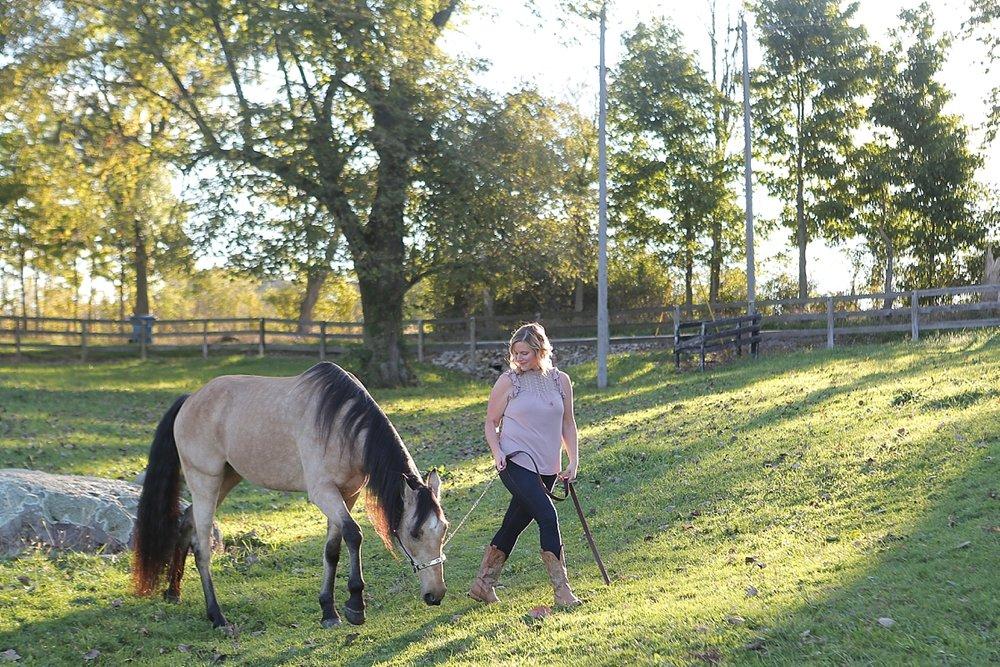 amandabeal-cimarron-horse_0002.jpg