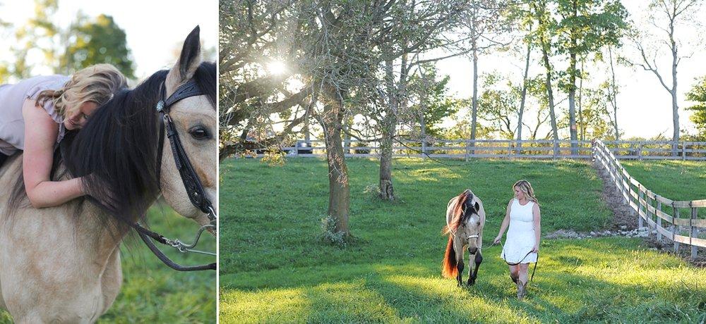 amandabeal-cimarron-horse_0006.jpg