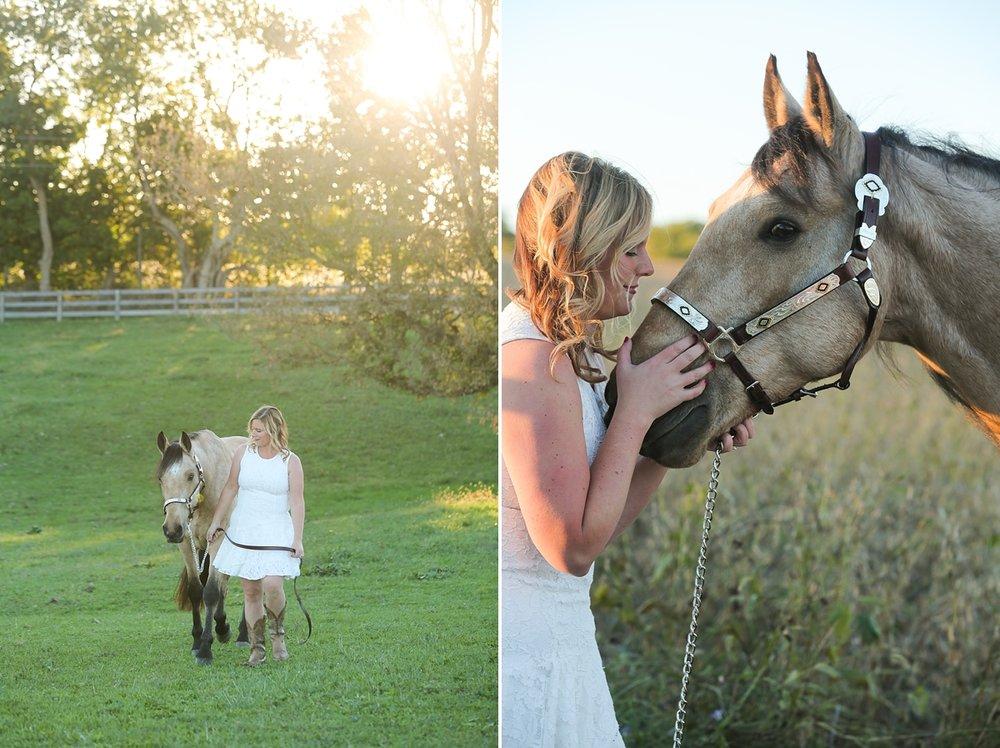 amandabeal-cimarron-horse_0009.jpg