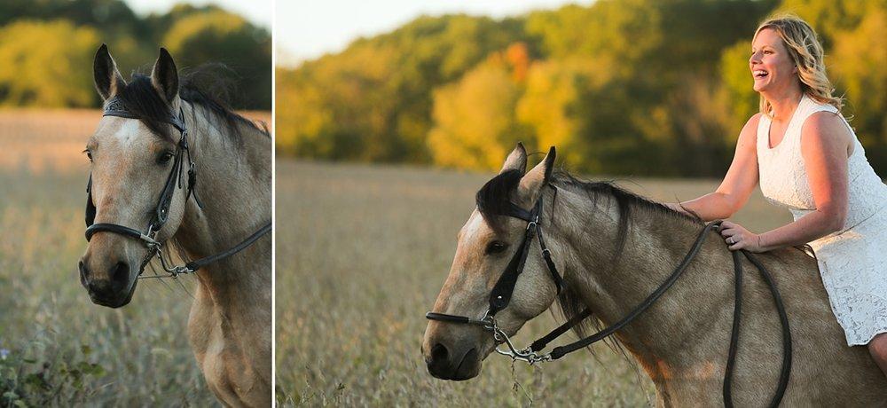 amandabeal-cimarron-horse_0010.jpg