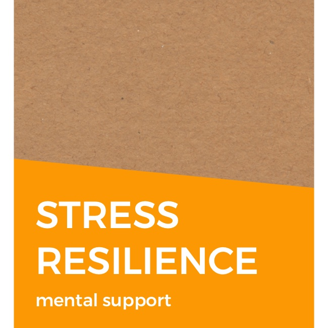 goal card stress resilience.jpg