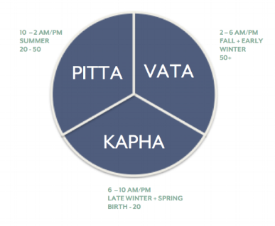 Shri Wellness Ayurvedic Clock.png