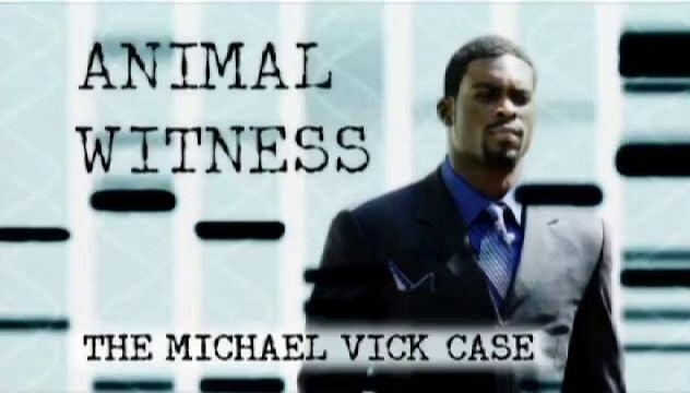 Animal Witness - Animal Planet