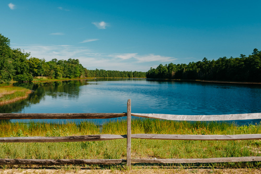 Wharton-State-Forest-Hiking-Mroczek-2811.jpg
